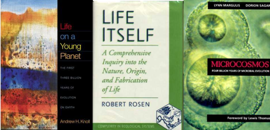 knoll_rosen_margulis_covers
